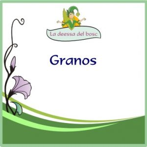Granos
