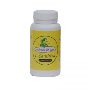 l-carnitina 90 cápsulas